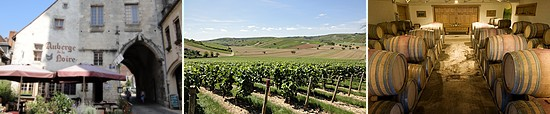 sancerre village, vineyards and wine cellar